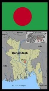 Bangladesh elephants