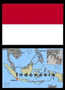 elephants indonesia